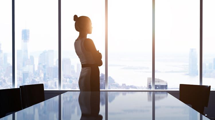 businesswoman in an office