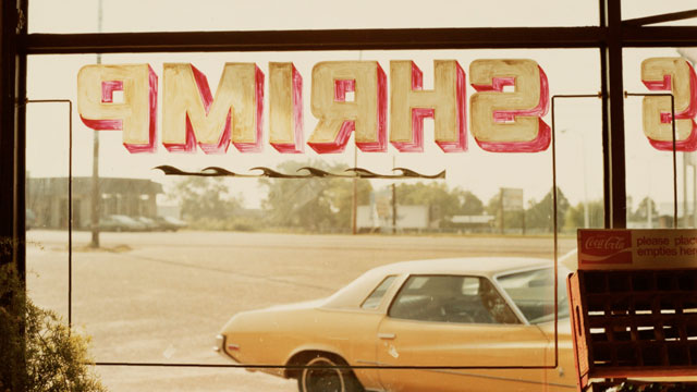 William Eggleston Photography