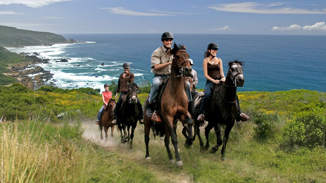 Horseback riders traveling up mountain along South Africa's Western Cape.