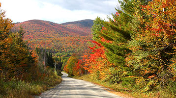 Vermont, Peace of Mind Guaranteed Bike Tours