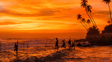 Stilt-fishers on the coast of Sri Lanka