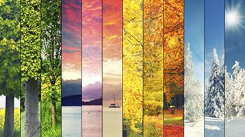 The year in seasons